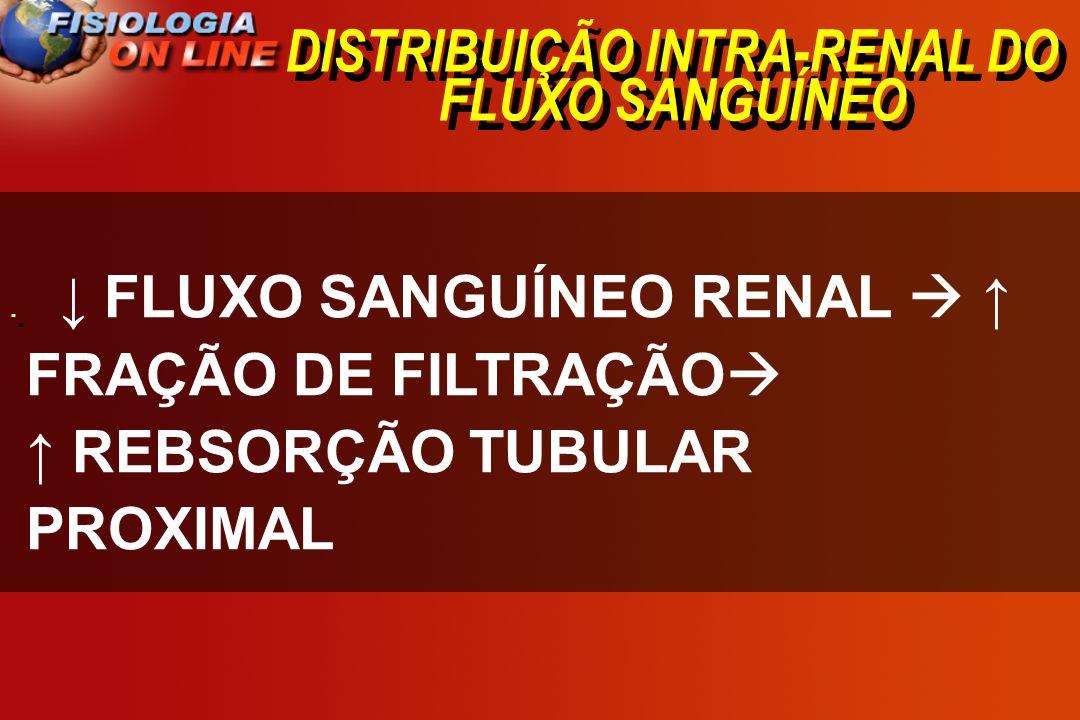 DISTRIBUIÇÃO INTRA-RENAL DO FLUXO SANGUÍNEO