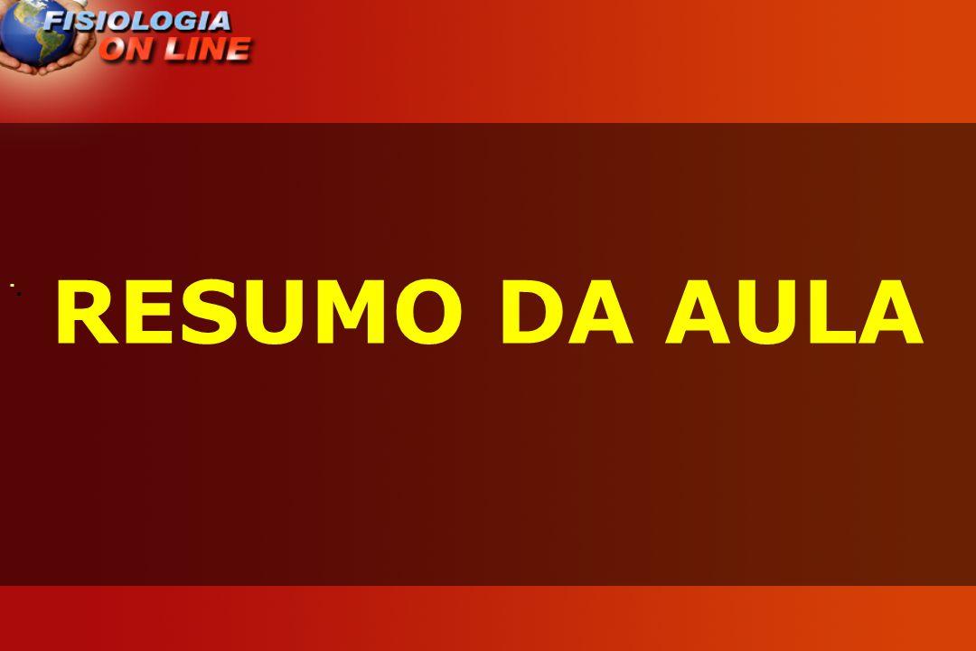 · RESUMO DA AULA