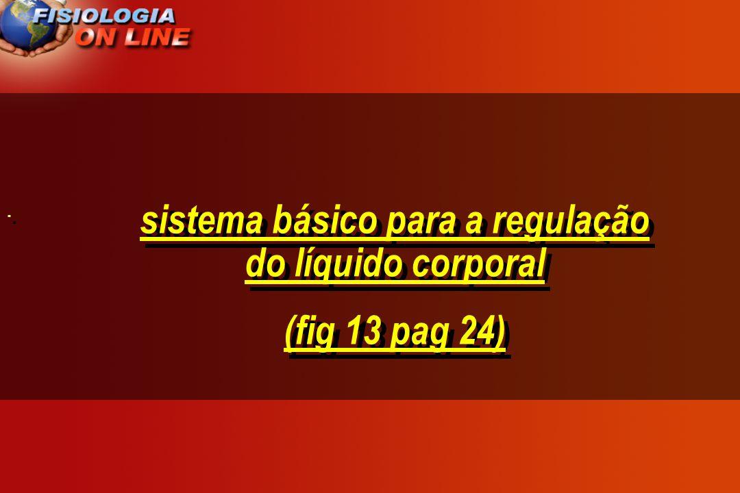sistema básico para a regulação do líquido corporal