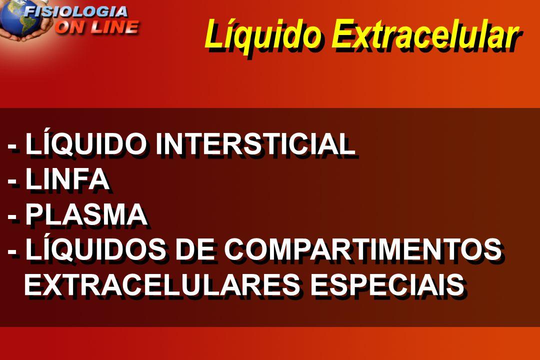 Líquido Extracelular - LÍQUIDO INTERSTICIAL - LINFA - PLASMA