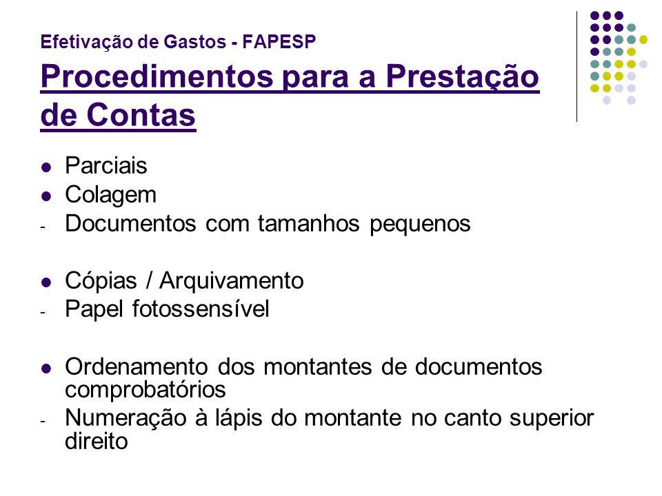 Efetivação de Gastos - FAPESP Procedimentos para a Prestação de Contas