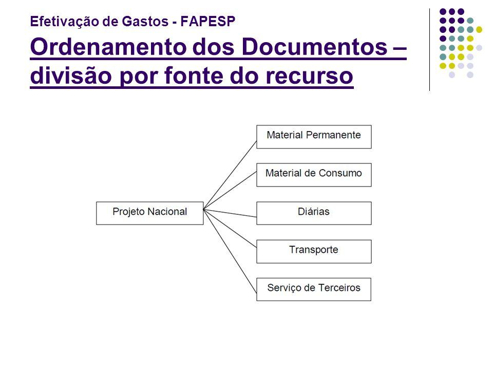 Efetivação de Gastos - FAPESP Ordenamento dos Documentos – divisão por fonte do recurso