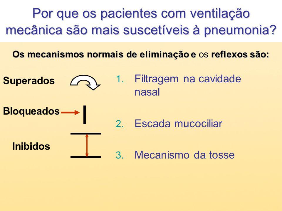 Por que os pacientes com ventilação mecânica são mais suscetíveis à pneumonia