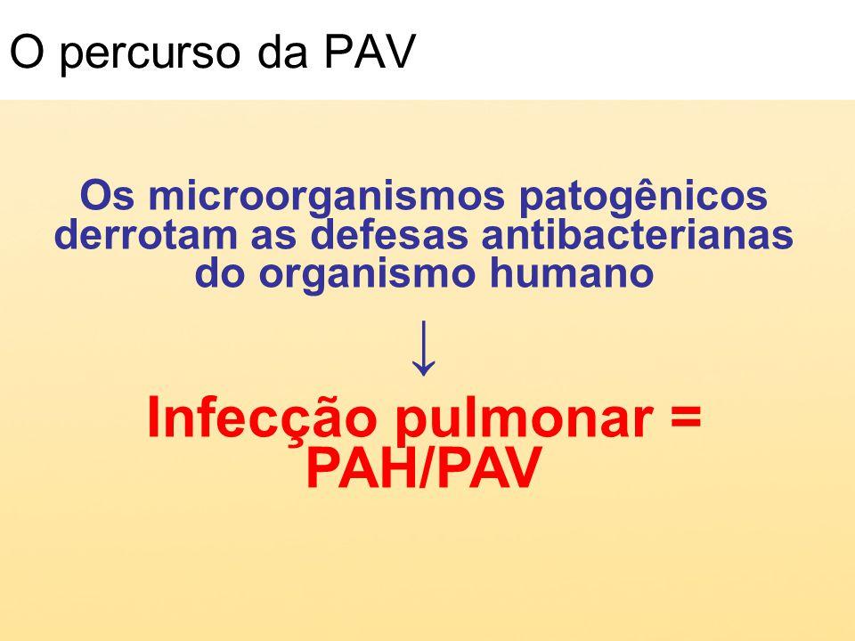 Infecção pulmonar = PAH/PAV