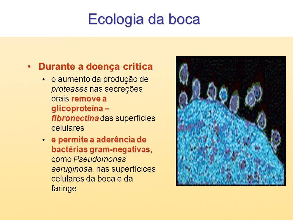 Ecologia da boca Durante a doença crítica