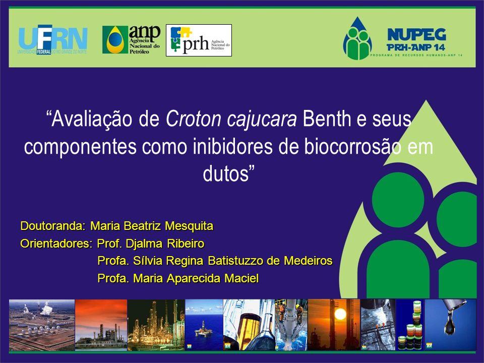 Avaliação de Croton cajucara Benth e seus componentes como inibidores de biocorrosão em dutos