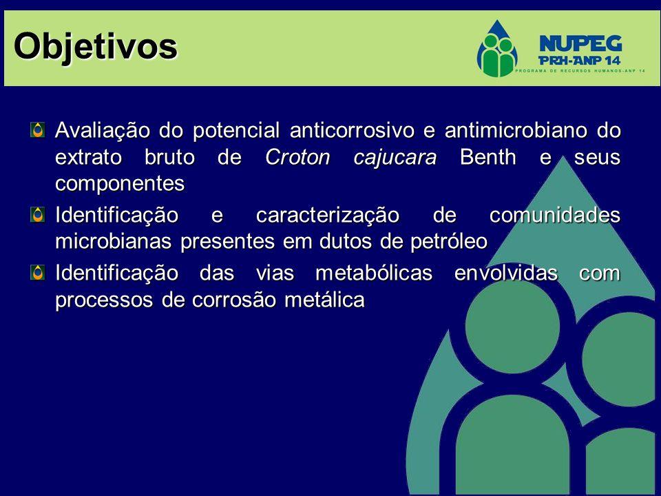 Objetivos Avaliação do potencial anticorrosivo e antimicrobiano do extrato bruto de Croton cajucara Benth e seus componentes.