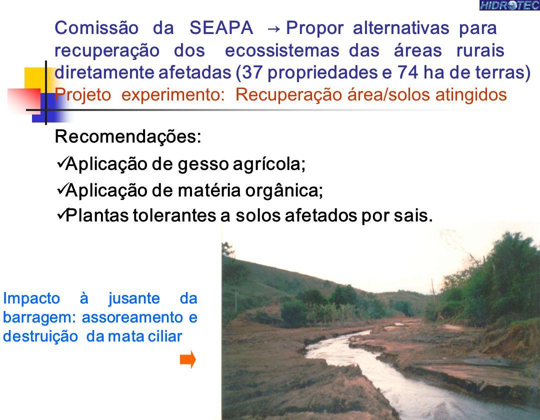 Aplicação de gesso agrícola; Aplicação de matéria orgânica;