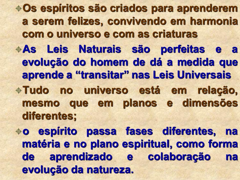 Os espíritos são criados para aprenderem a serem felizes, convivendo em harmonia com o universo e com as criaturas