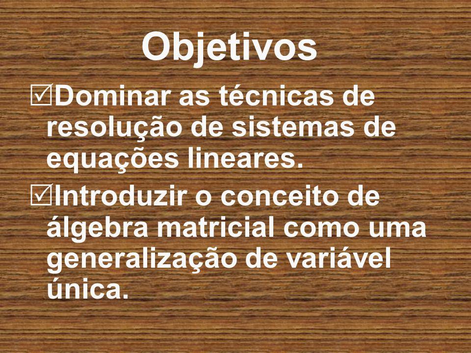 Objetivos Dominar as técnicas de resolução de sistemas de equações lineares.