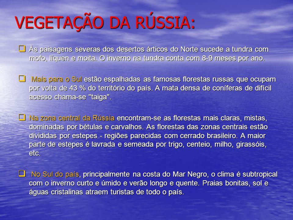 VEGETAÇÃO DA RÚSSIA: