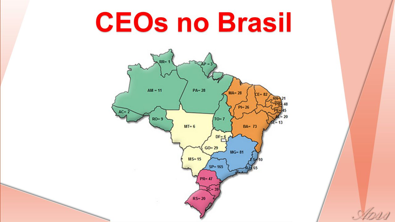 CEOs no Brasil