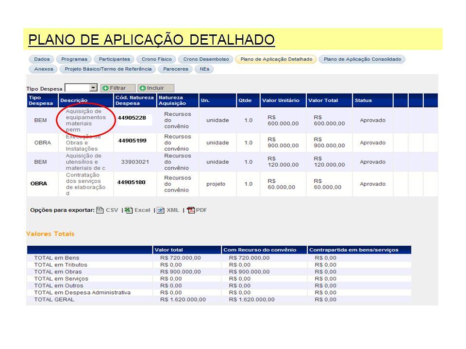 PLANO DE APLICAÇÃO DETALHADO