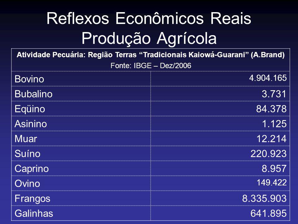 Reflexos Econômicos Reais Produção Agrícola