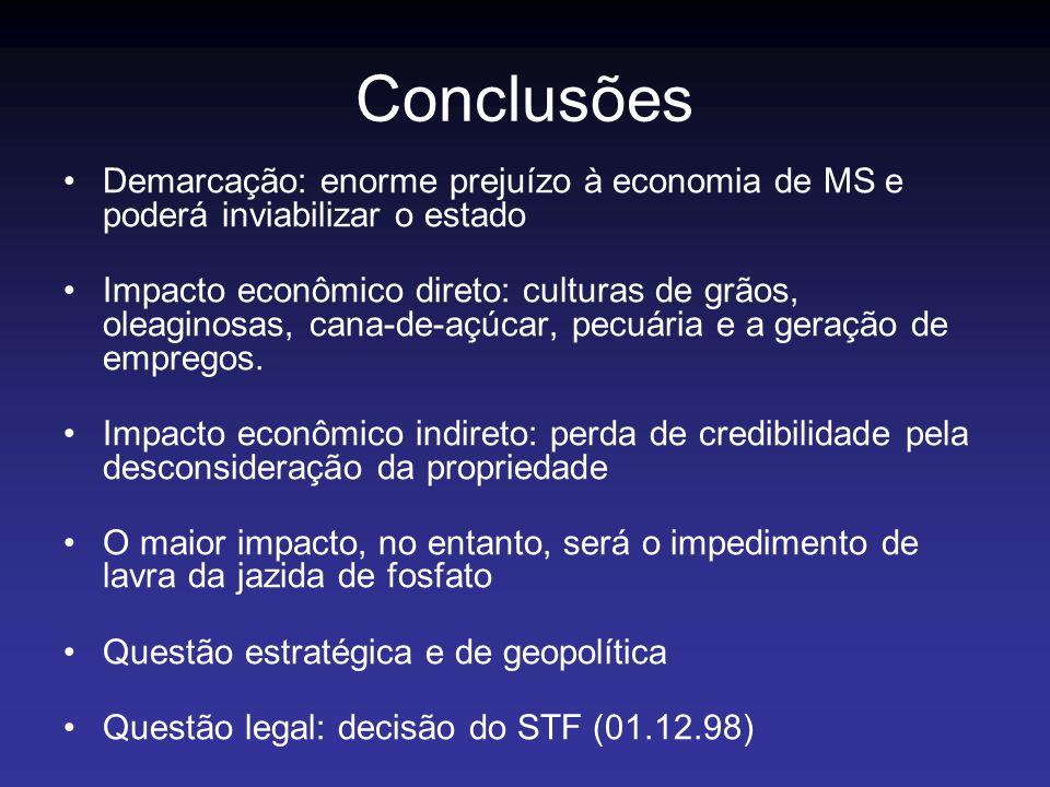Conclusões Demarcação: enorme prejuízo à economia de MS e poderá inviabilizar o estado.