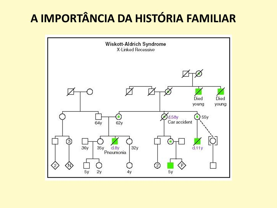 A IMPORTÂNCIA DA HISTÓRIA FAMILIAR