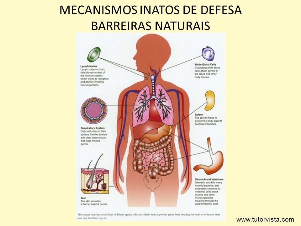 MECANISMOS INATOS DE DEFESA