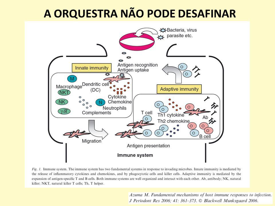 A ORQUESTRA NÃO PODE DESAFINAR