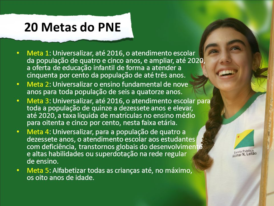 20 Metas do PNE