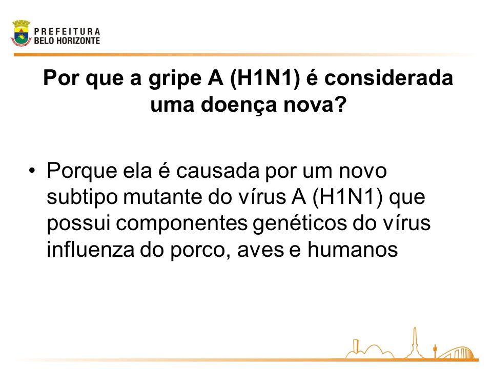 Por que a gripe A (H1N1) é considerada uma doença nova