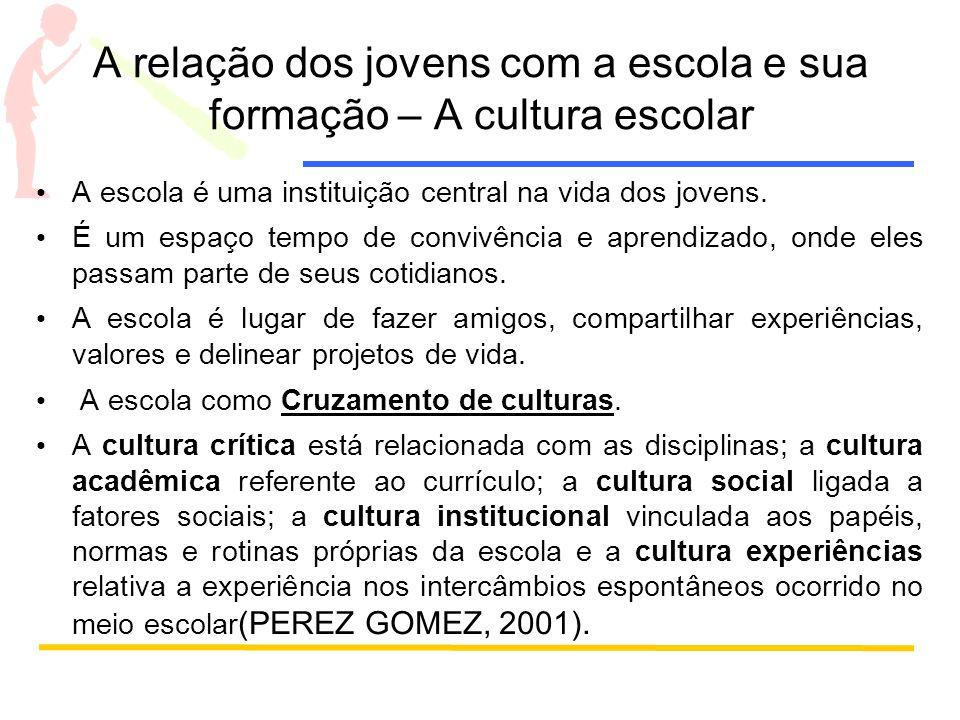 A relação dos jovens com a escola e sua formação – A cultura escolar