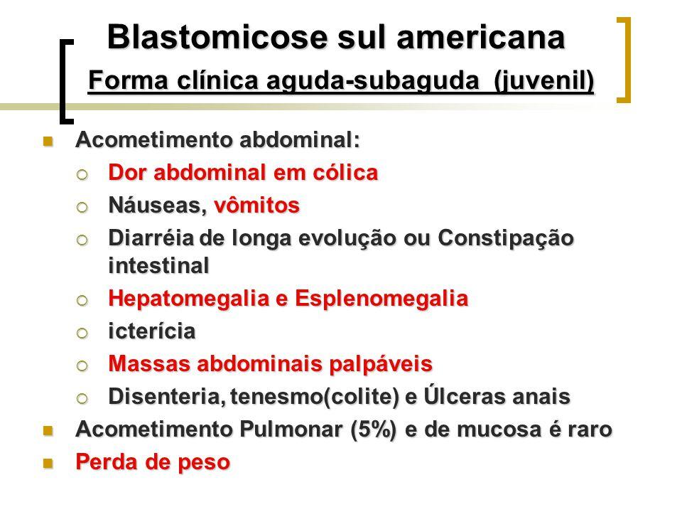 Blastomicose sul americana Forma clínica aguda-subaguda (juvenil)