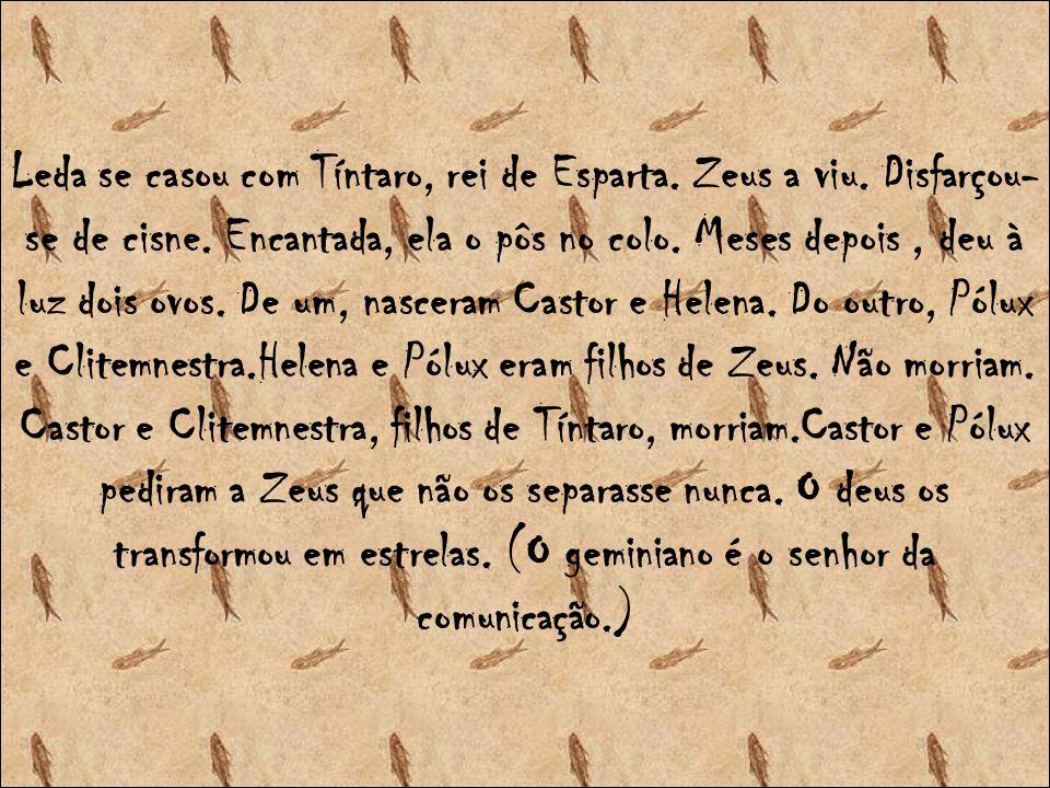 Leda se casou com Tíntaro, rei de Esparta. Zeus a viu
