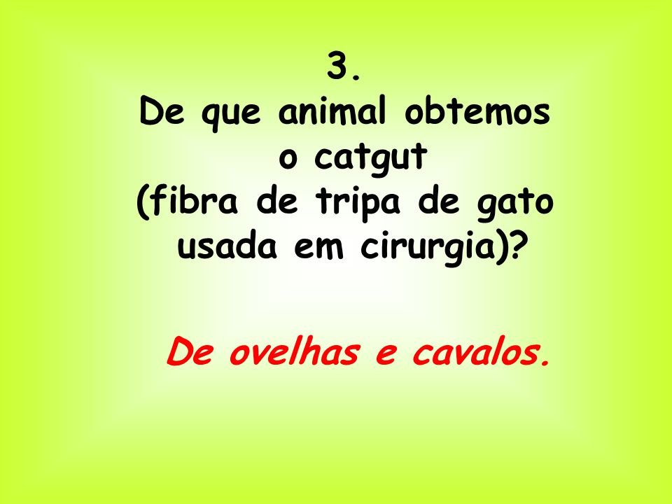 3. De que animal obtemos. o catgut. (fibra de tripa de gato.