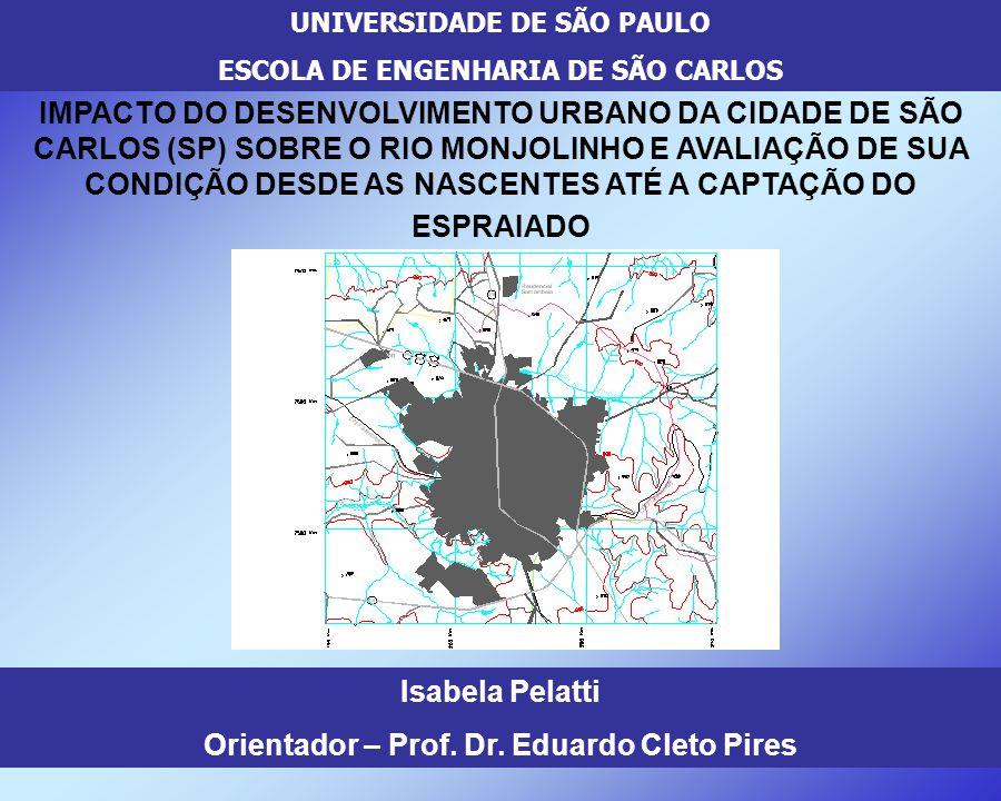 Orientador – Prof. Dr. Eduardo Cleto Pires