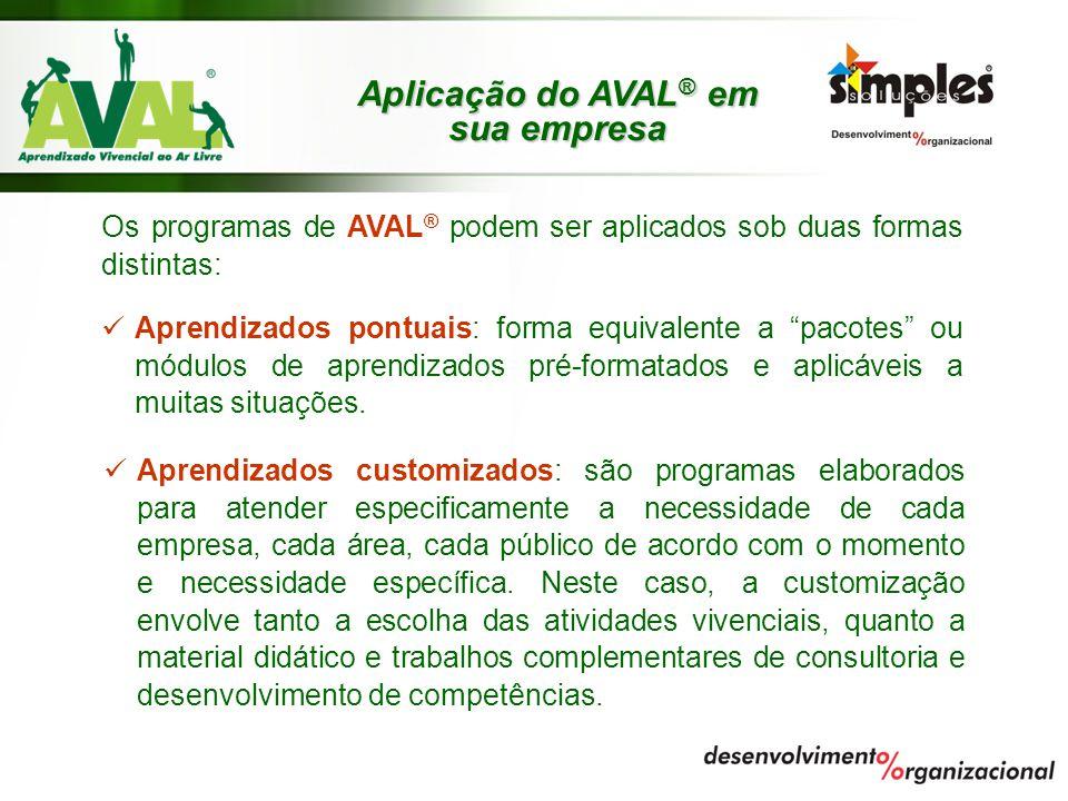 Aplicação do AVAL® em sua empresa