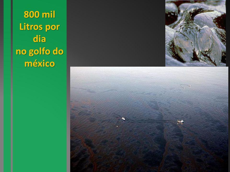 800 mil Litros por dia no golfo do méxico