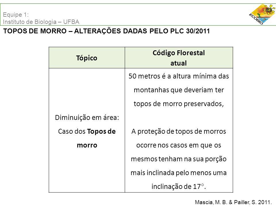 Código Florestal atual