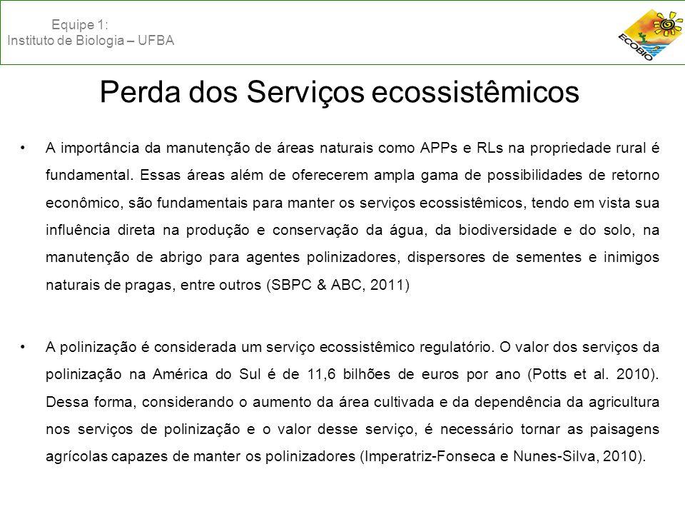 Perda dos Serviços ecossistêmicos