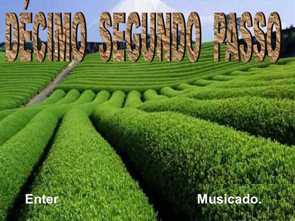 DÉCIMO SEGUNDO PASSO Enter Musicado. Ria slides