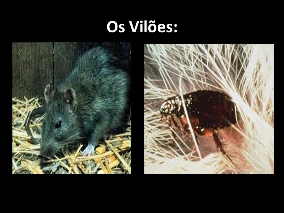 Os Vilões: