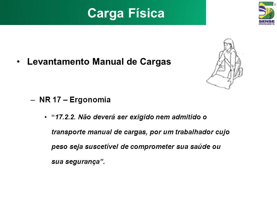 Carga Física Levantamento Manual de Cargas NR 17 – Ergonomia