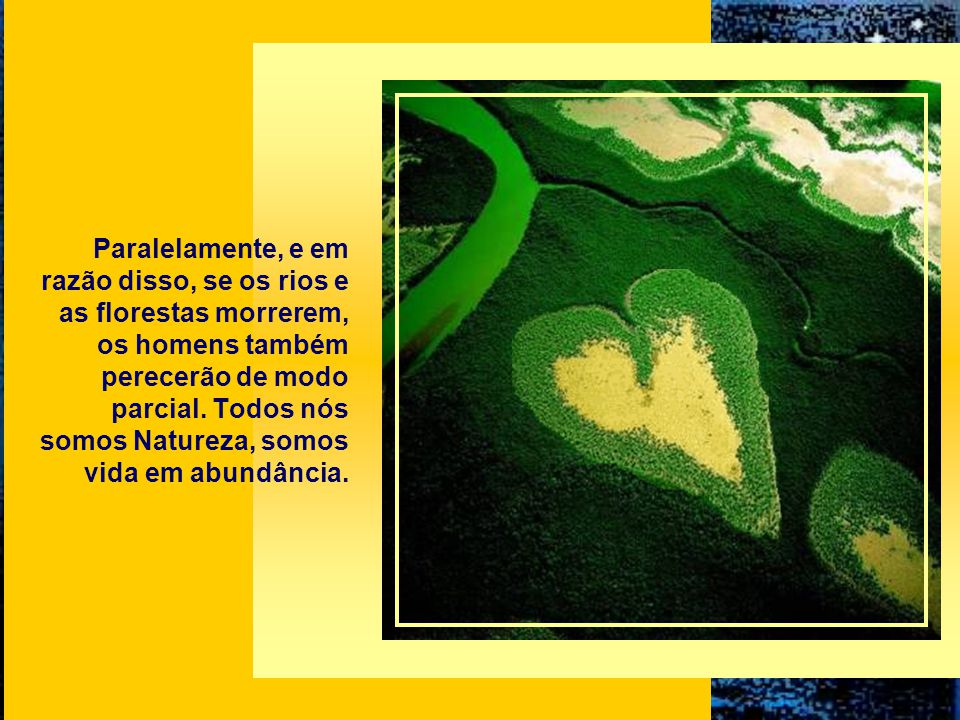 Paralelamente, e em razão disso, se os rios e as florestas morrerem, os homens também perecerão de modo parcial.