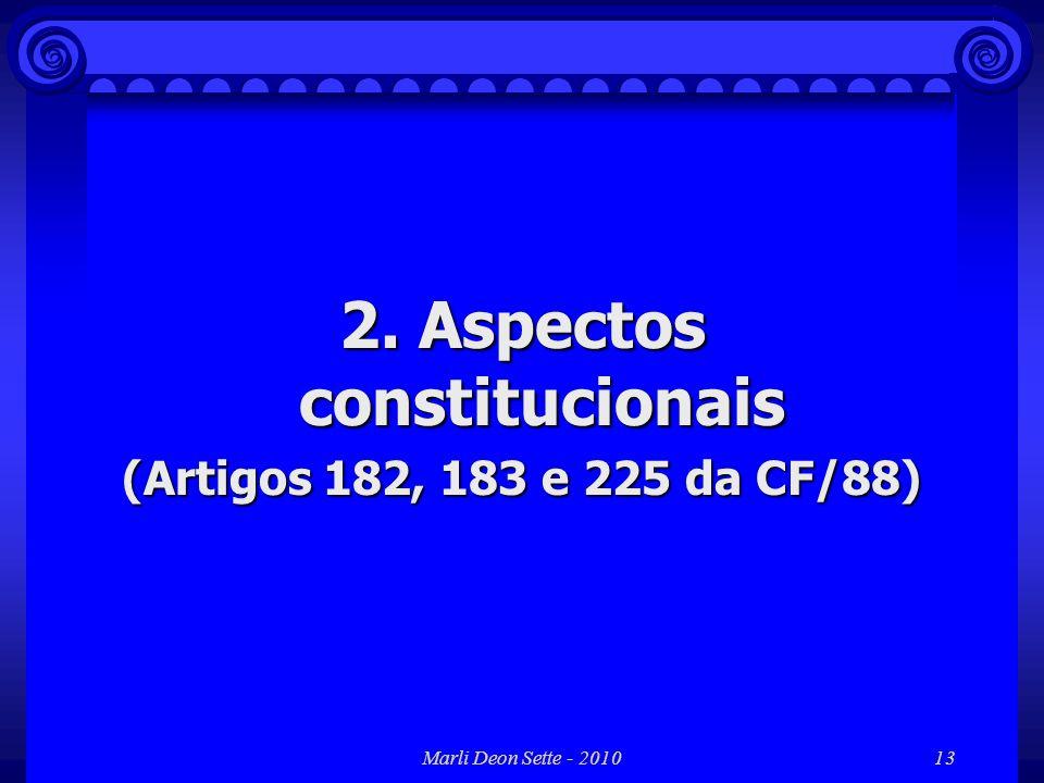 2. Aspectos constitucionais