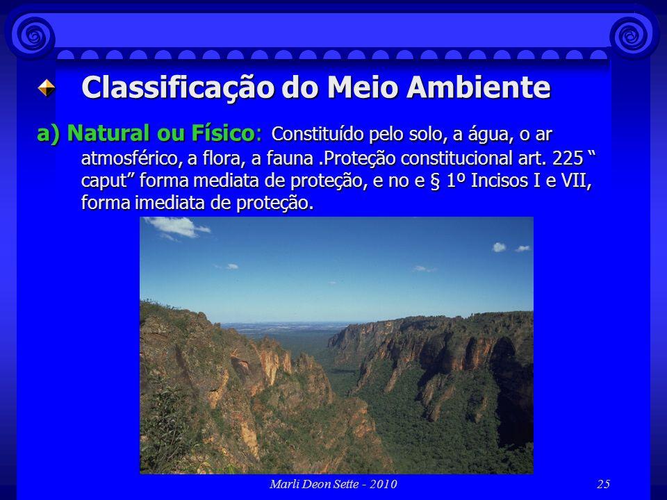 Classificação do Meio Ambiente