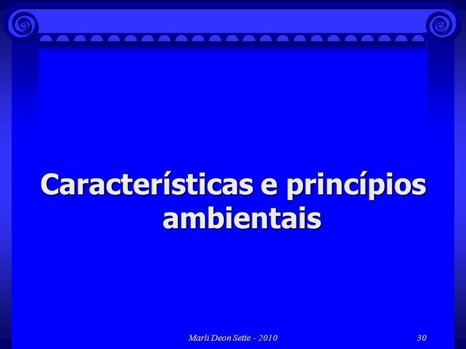 Características e princípios ambientais