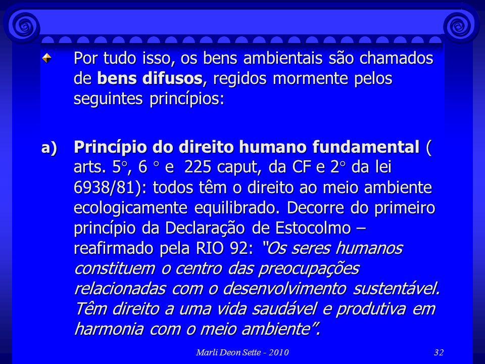 Por tudo isso, os bens ambientais são chamados de bens difusos, regidos mormente pelos seguintes princípios: