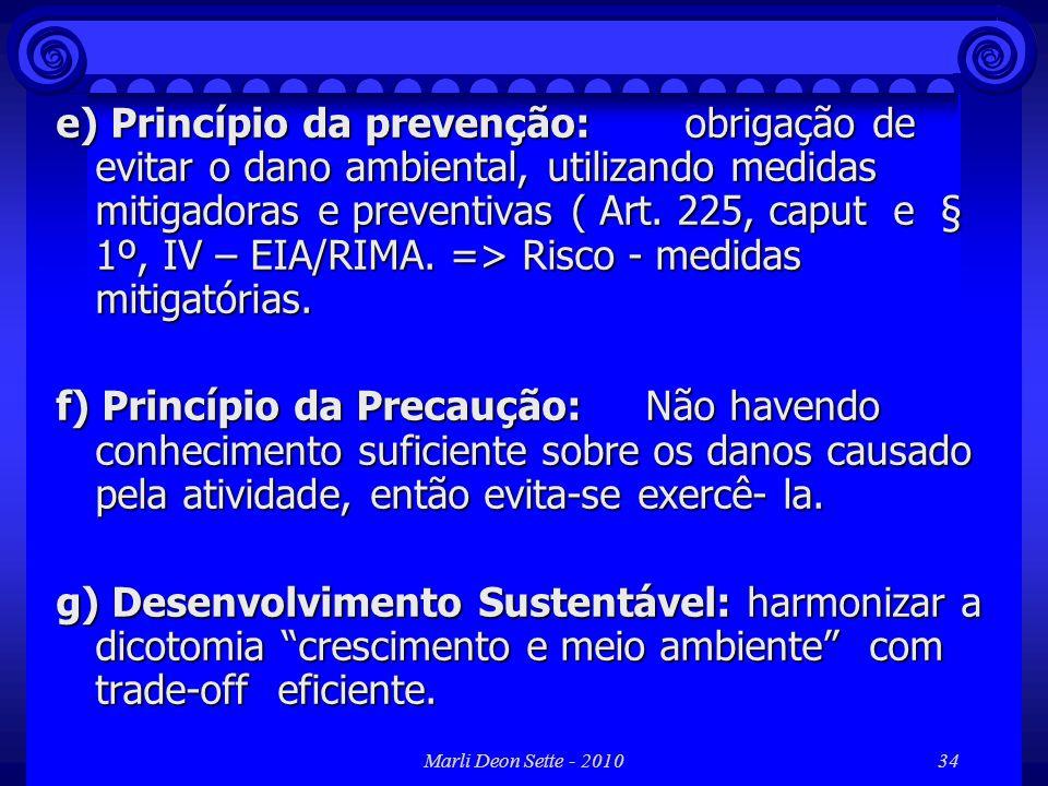 e) Princípio da prevenção: