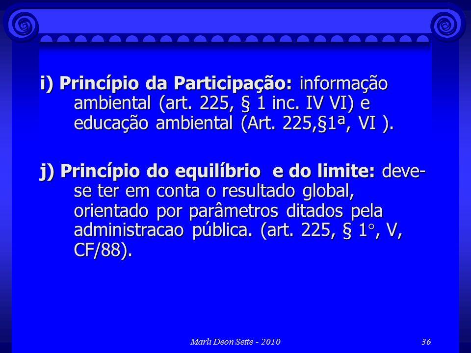 i) Princípio da Participação: informação ambiental (art. 225, § 1 inc