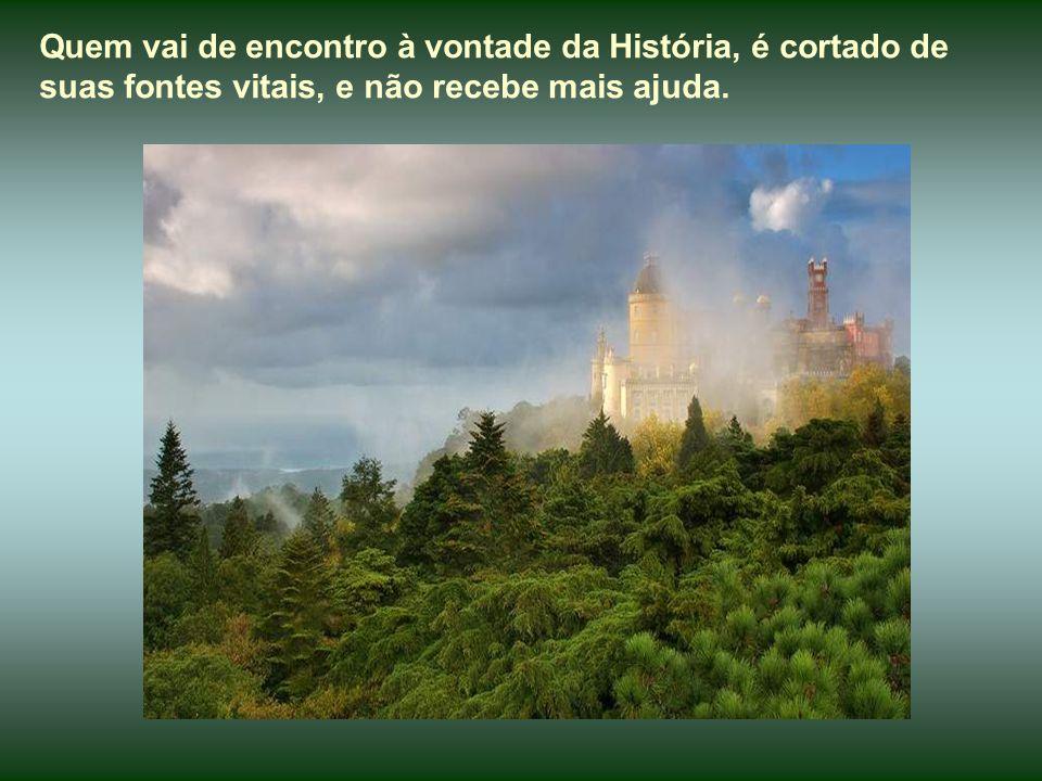 Quem vai de encontro à vontade da História, é cortado de suas fontes vitais, e não recebe mais ajuda.