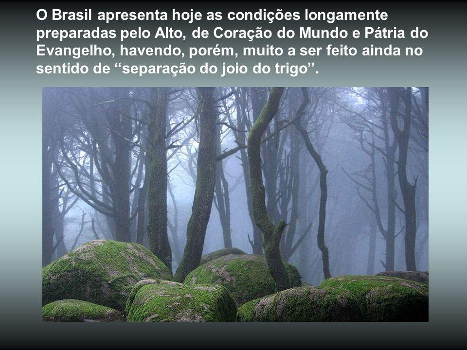 O Brasil apresenta hoje as condições longamente preparadas pelo Alto, de Coração do Mundo e Pátria do Evangelho, havendo, porém, muito a ser feito ainda no sentido de separação do joio do trigo .