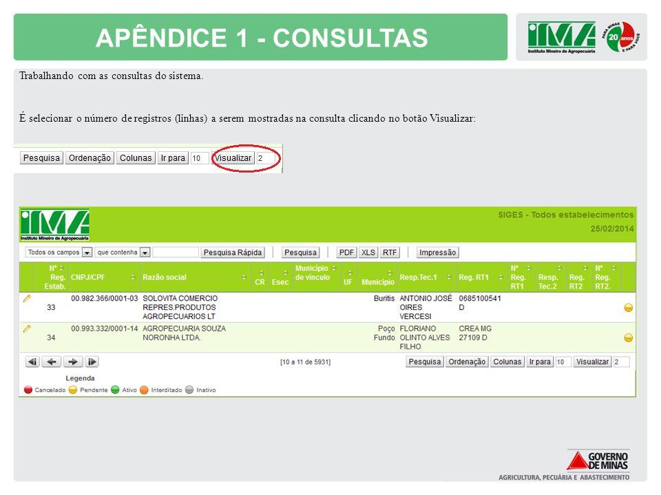 APÊNDICE 1 - CONSULTAS Trabalhando com as consultas do sistema.