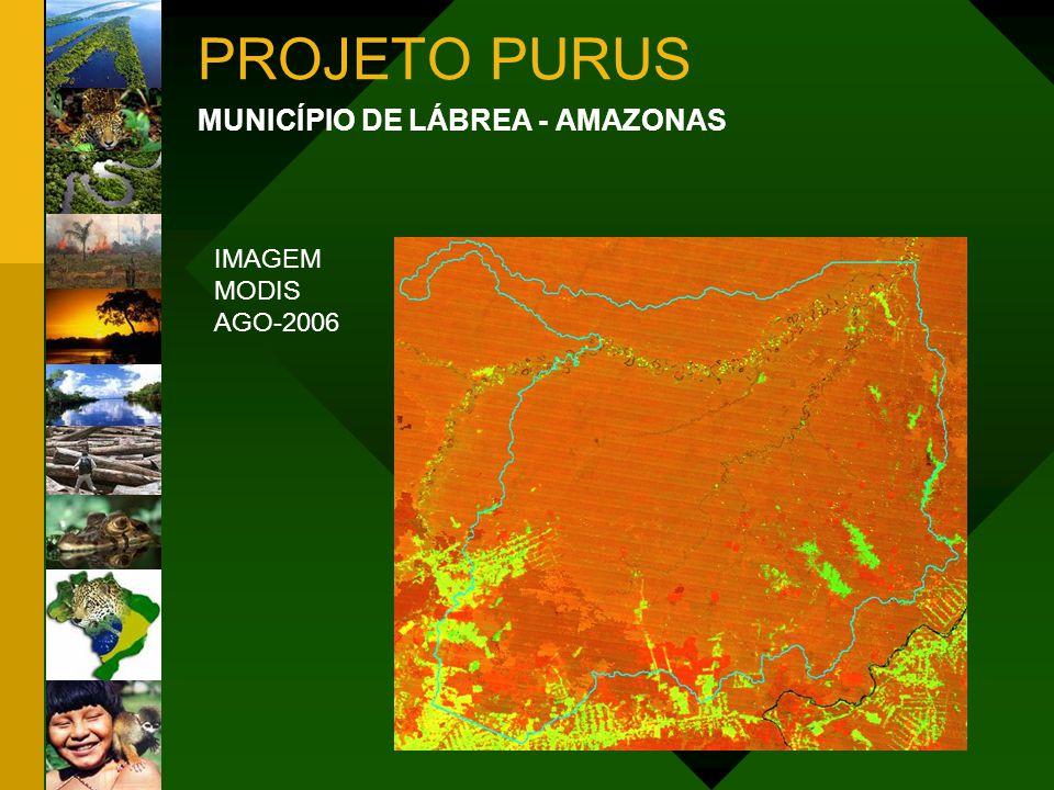 PROJETO PURUS MUNICÍPIO DE LÁBREA - AMAZONAS IMAGEM MODIS AGO-2006