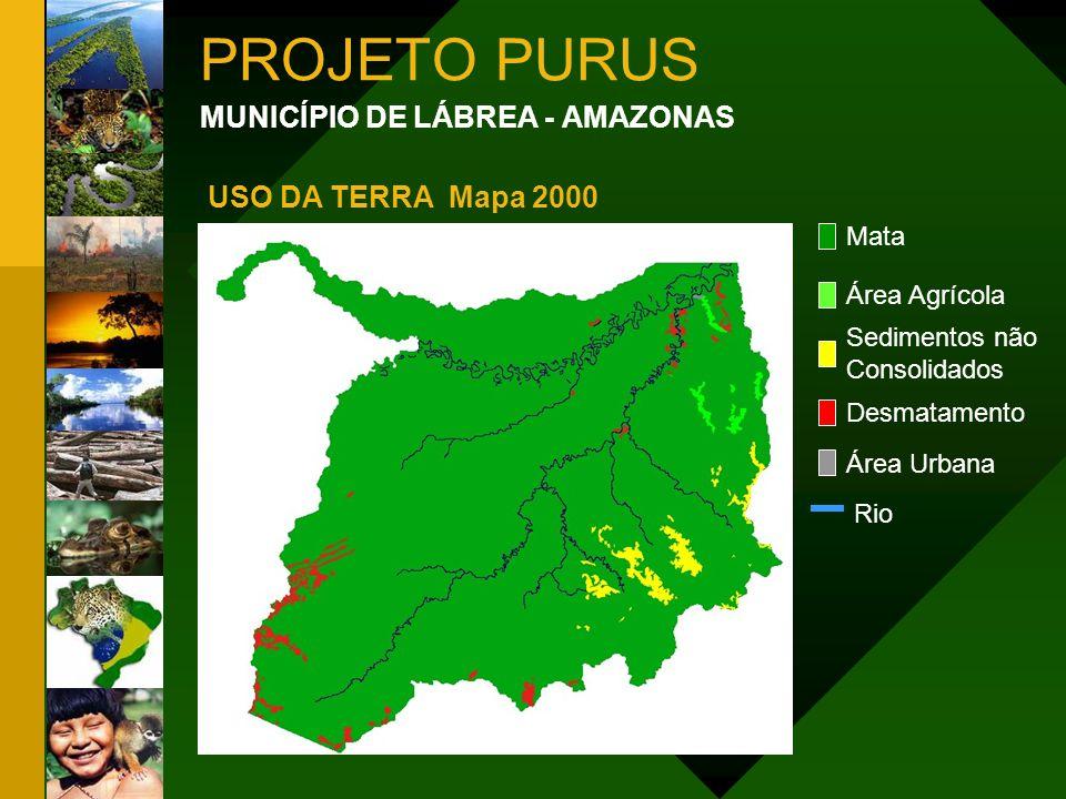 PROJETO PURUS MUNICÍPIO DE LÁBREA - AMAZONAS USO DA TERRA Mapa 2000