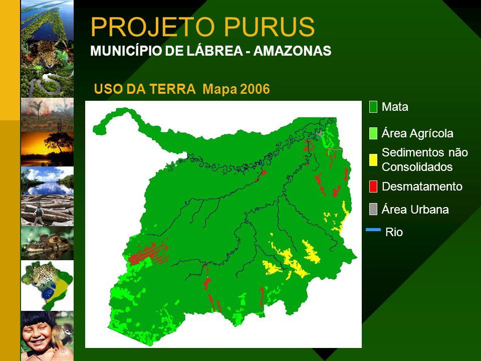 PROJETO PURUS MUNICÍPIO DE LÁBREA - AMAZONAS USO DA TERRA Mapa 2006