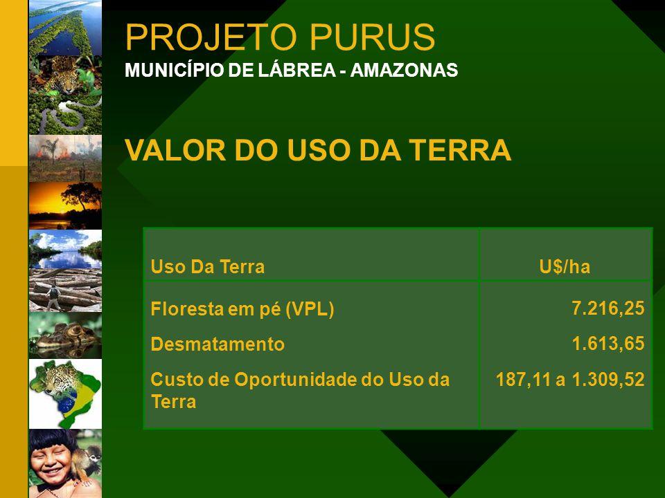PROJETO PURUS VALOR DO USO DA TERRA MUNICÍPIO DE LÁBREA - AMAZONAS